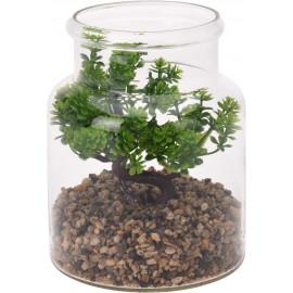 Koopman Roślina DECO w słoju 15x19cm