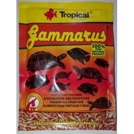 Tropical Gammarus pokarm dla ryb i żółwi 12g