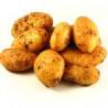 Ziemniaki wczesne Kg