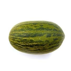 Melon zielony 1szt