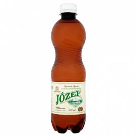 Uzdrowisko Wysowa Józef Lecznicza woda mineralna 500 ml