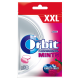 Orbit Professional Mints Forest Fruit XXL Cukierki bez cukru 30 g (30 cukierków)