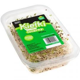 POKARM ŻYCIA kiełki lucerny alfalfa 50g