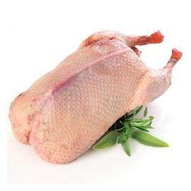 ZŁOTE SMAKI Kaczka (porcja około 2 kg)