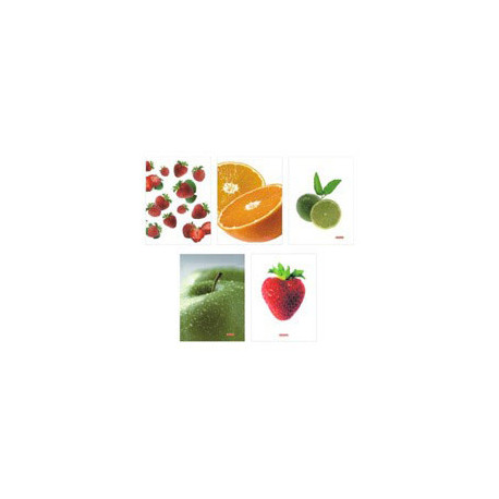 HERLITZ WORLD OF FRUITS BRULION A5/96K.KRATKA