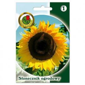 PNOS Nasiona Słonecznik Ogrodowy 10g