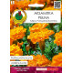 PNOS Nasiona Aksamitka pełna niska pomarańczowa