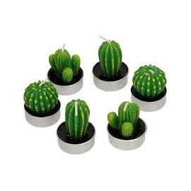 Świeczki w kształcie kaktusów 6 szt.